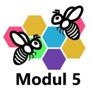 grundkurse modul 5