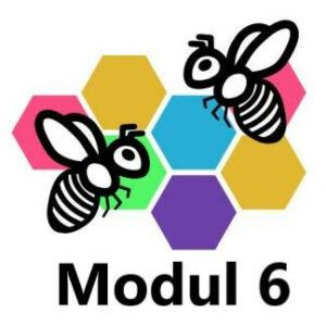 grundkurse modul 6